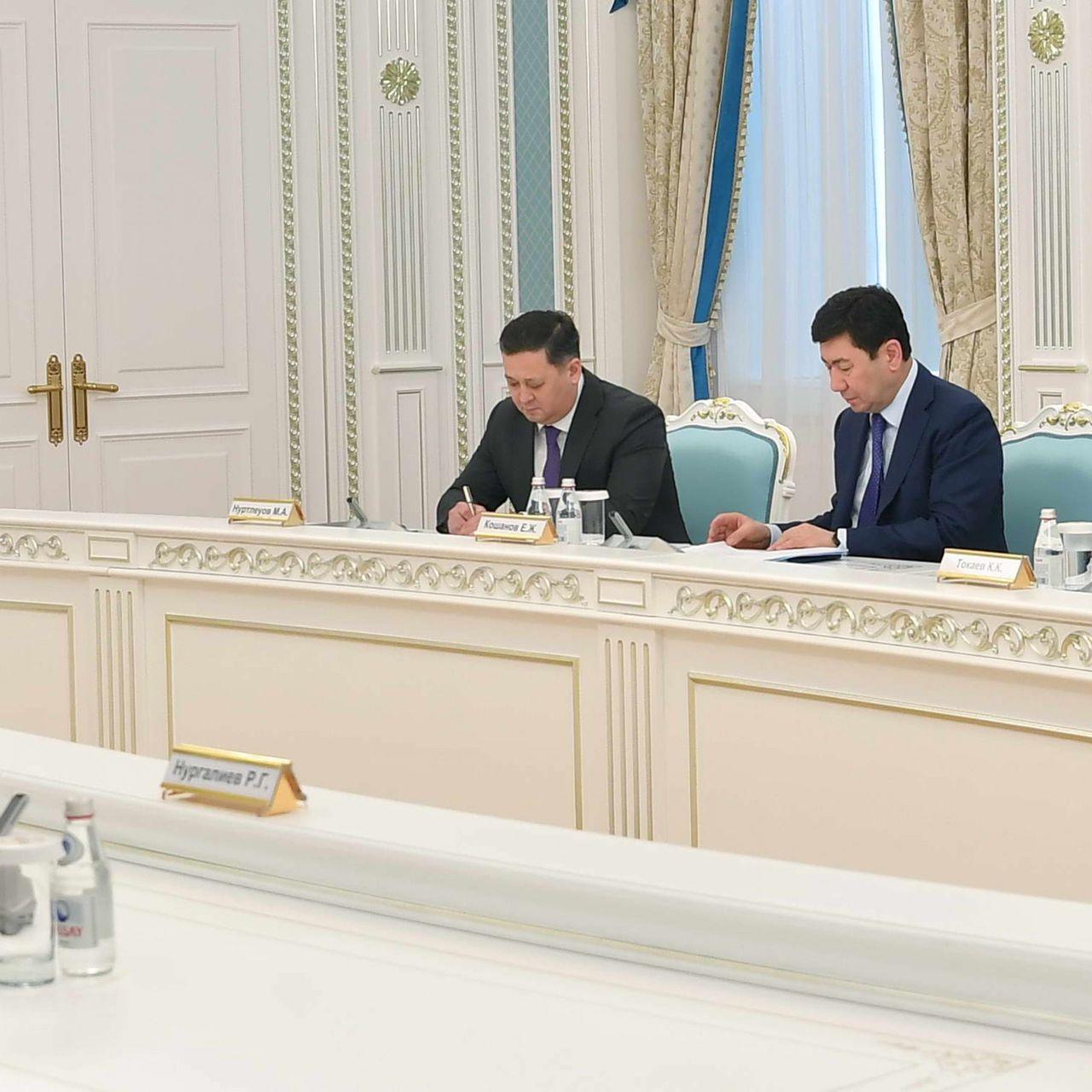 Қазақстан Президенті Ресей Федерациясының Қауіпсіздік кеңесі төрағасының орынбасары Дмитрий Медведевпен кездесті